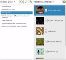Lucid Crop diagnostics key example