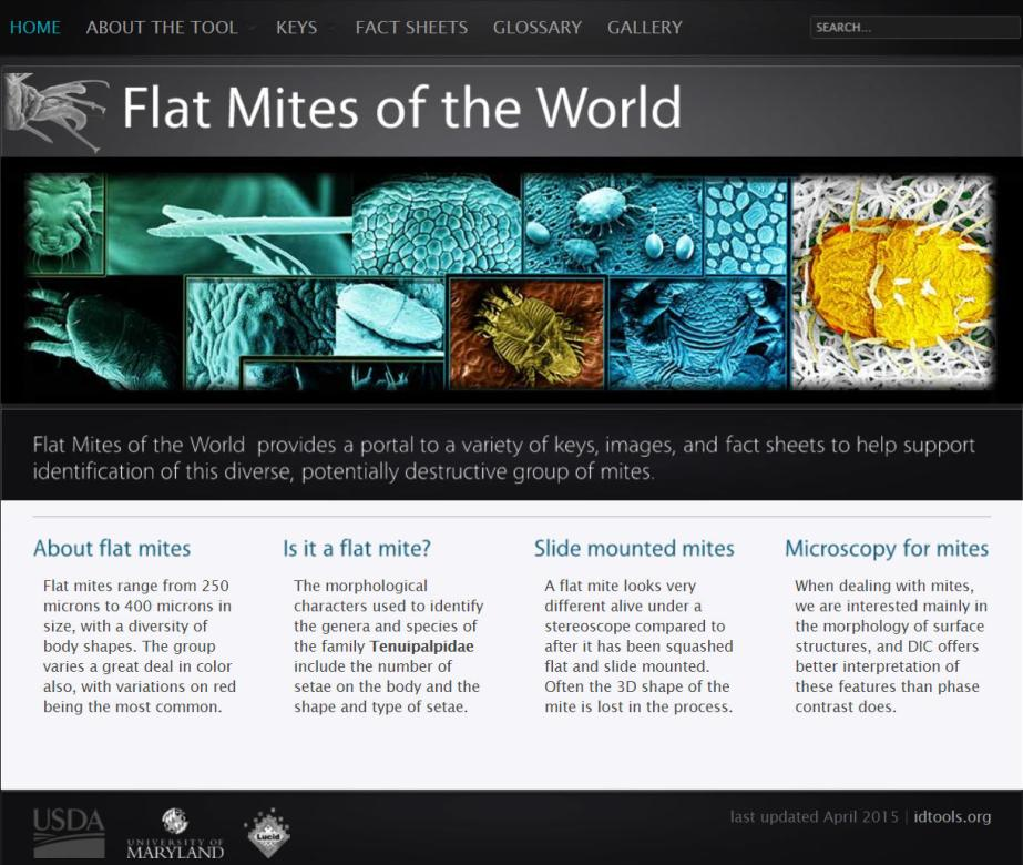 Flat mites of the world website home page