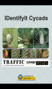 IDentfyIt Cycads splash screen