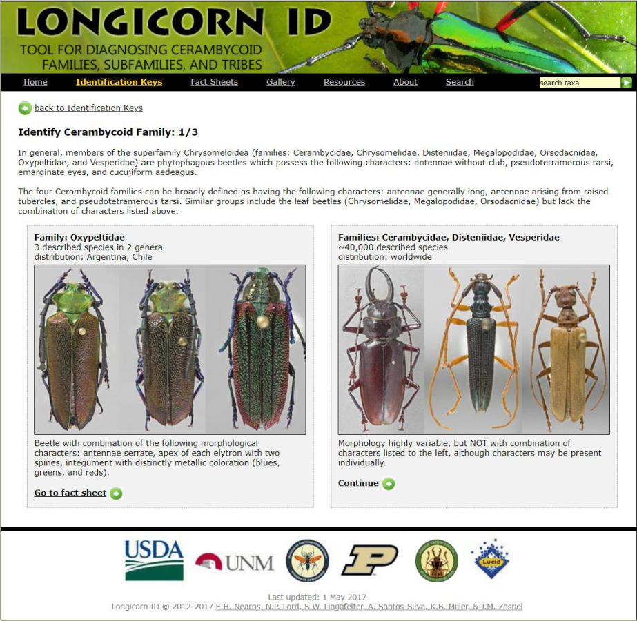 Longhorn ID website home page