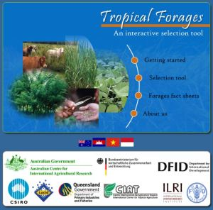 Tropical Forages website home page