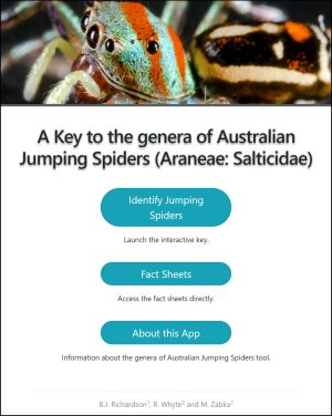 Australian Genera of Jumping Spiders Home screen