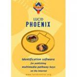 Lucid_Phoenix-228x228