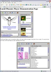 Lucid Phoenix multiple players on web page example