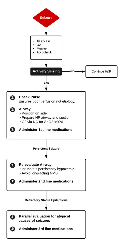 Management of Seizures