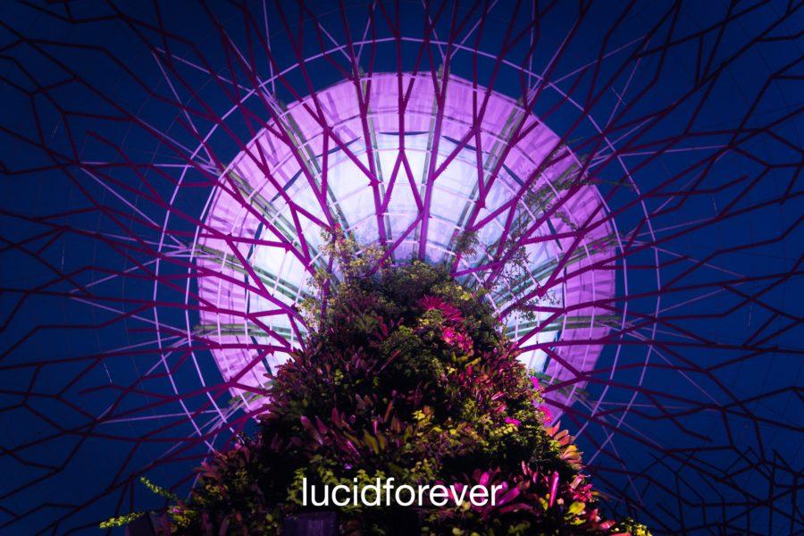 Increase Lucid Dream Length (10 techniques) | Lucid Forever