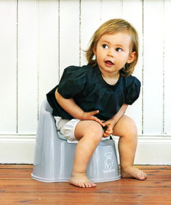 potty chair for girls tell city company guide we review the best training gear lucie s grey