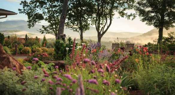 the gardens with purple and red flowers, three trees which you can look thru and see the Mountains
