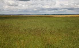 Fields, sky and skyline, Avrilmont, France