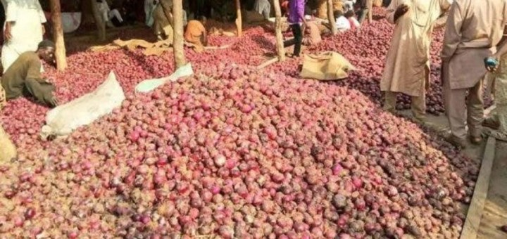 Onion traders threaten to cut supply to Southern Nigeria
