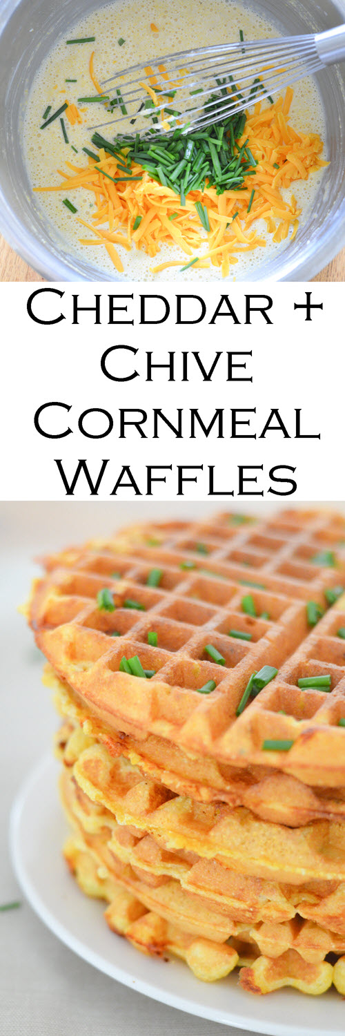 Savory Cornmeal Waffles - Chive + Cheddar Cheese Waffles. A fun and easy dinner recipes great for kids, family, and adults. #LMrecipes #waffles #breakfast #breakfastfordinner #easyrecipe #easydinner #foodblog #foodblogger #vegetarian