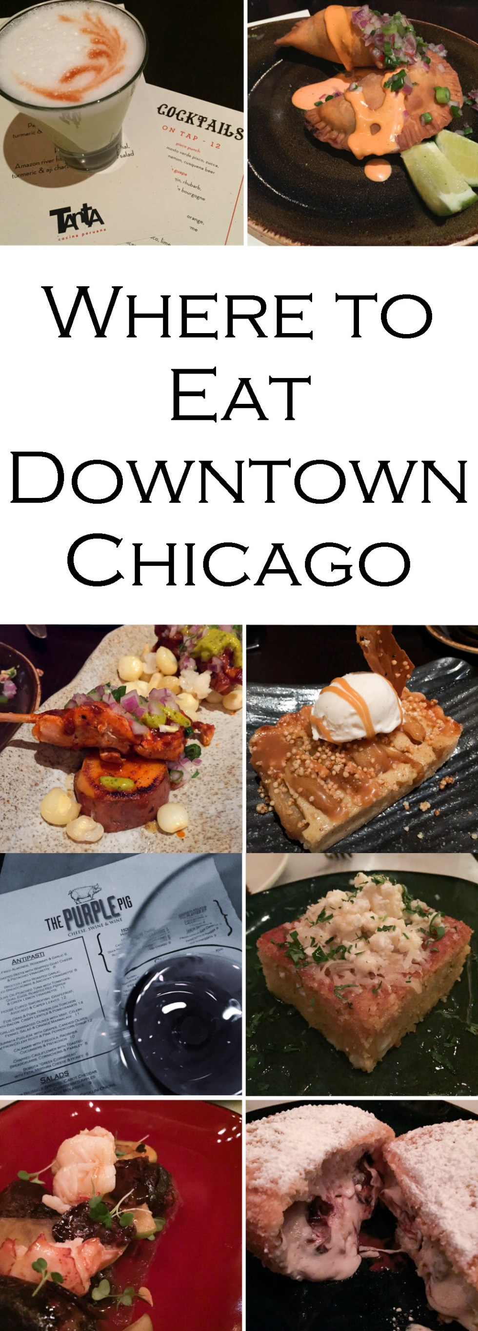 Where to Eat in Downtown Chicago Guide