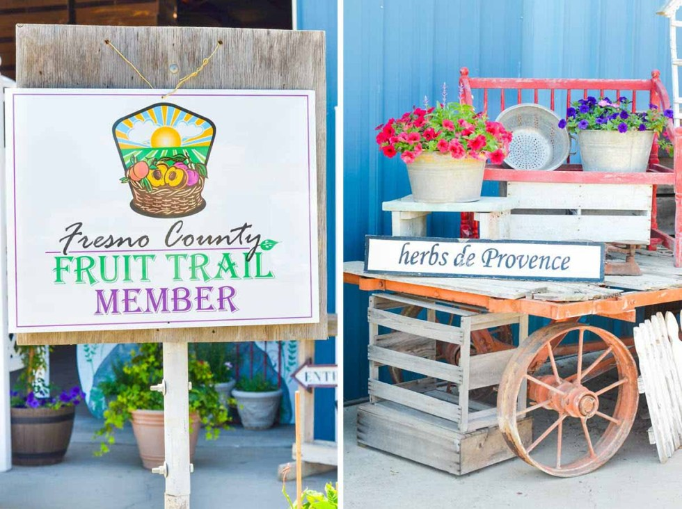 Fresno Fruit Trail | What to do in California Central Valley on Highway99 | Luci's Morsels :: LA, California Travel Blogger