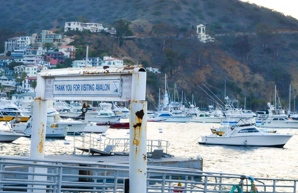 What to Do One Day Trip to Avalon Catalina Island