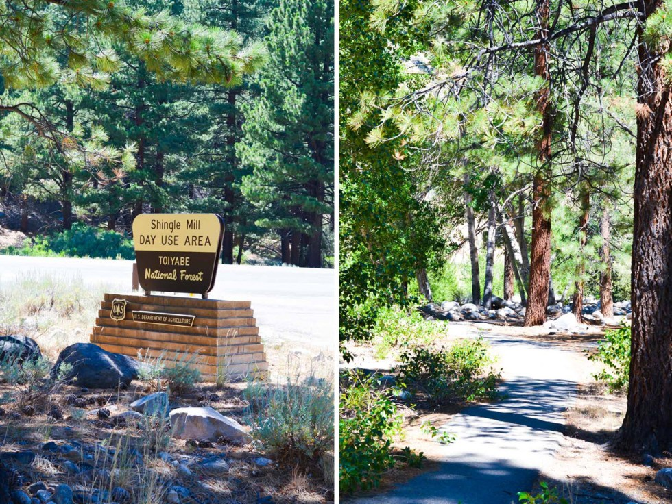 Highway 395 Photos Diary Reno, Nevada to Mono Lake, California | Shingle Mill Day Use Area in Walker Canyon | Luci's Morsels :: California Travel Blogger