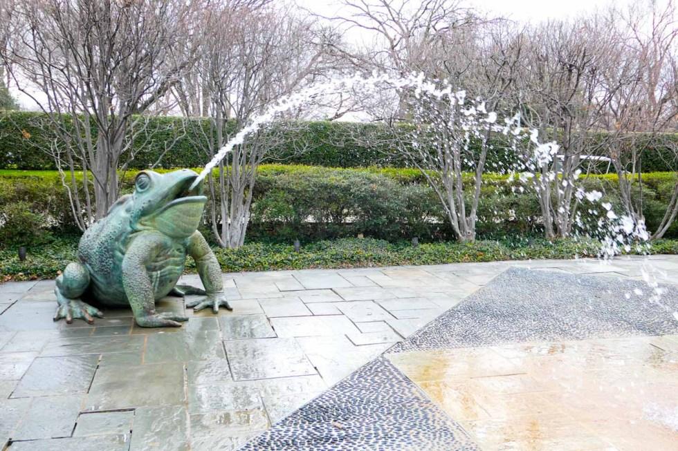 Dallas Botanical Gardens Photos + Review