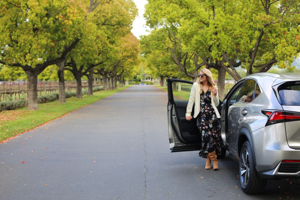 Lexus HX300h in Driveway of St. Supery Winery