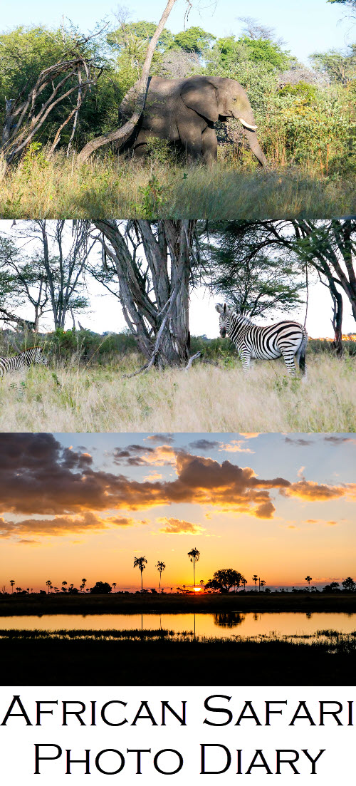 Best Zimbabwe Safari. Hwange National Park Safari Photos. See this Safari photo diary, including sunsets in Africa, zebra, elephants, impala, and giraffe. #africa #safari #zimbabwe #zim #safaris #sunsets #cloudporn #travelphotography #travel #travelblog #lpworldtravels