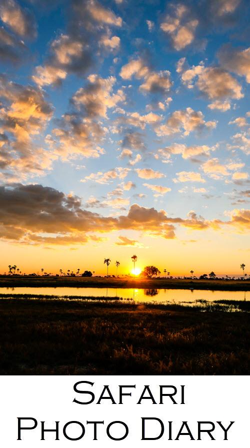 Best Zimbabwe Safari. Hwange National Park Safari Photos. See this Safari photo diary, including sunsets in Africa, zebra, elephants, impala, and giraffe. #africa #safari #zimbabwe #zim #safaris #sunsets #cloudporn #travelphotography #travel #travelblog #lpworldtravels