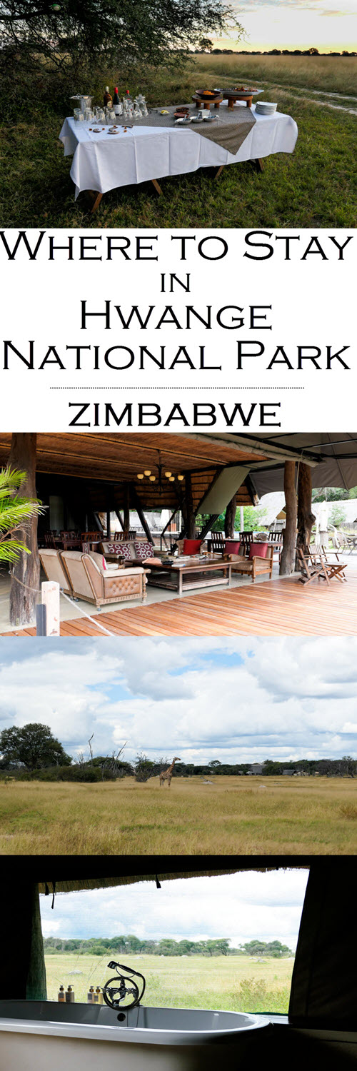 Where to Stay in Hwange National Park - The Hide Photo Review. Where to Stay in Hwange National Park - The Hide Photo Review. #africa #zimbabwe #hwange #zim #southafrica #traveblo #safari #safaris #travelblogger #blogger #lpworldtravels