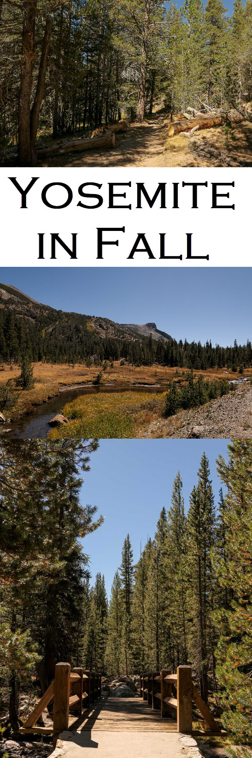 Yosemite in Fall Photos - Tuolumne - Twin Bridges. Visit national parks in the offseason for the best time to visit Yosemite. A great California travel destination. #yosemite #travel #travelblogger #nationalpark #california #visitcalifornia #traveldestinations #yosemitenationalpark #traveltips