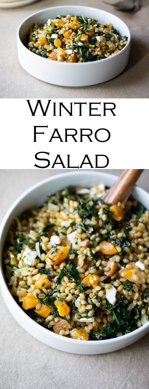Kale Farro Salad Recipe. A delicious winter farro salad to enjoy warm or cold. A healthy, whole grain dinner recipe and a perfect make-ahead lunch idea, the vegetarian recipe is a winner for all. #LMrecipes
