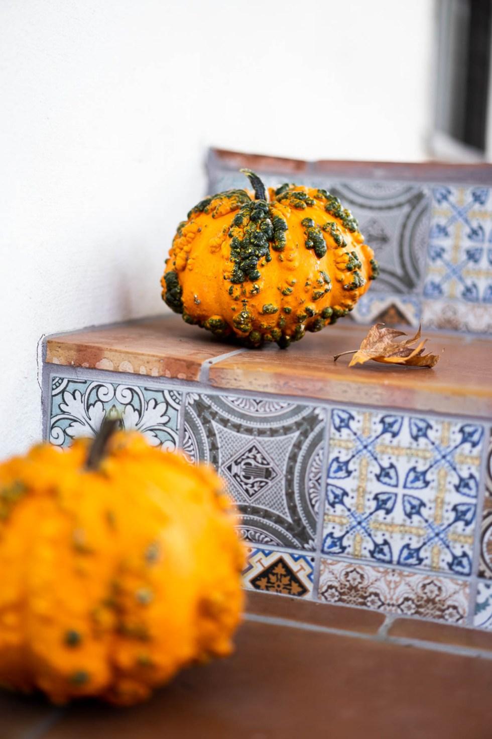 Knucklehead Pumpkins on Porch - Natural Fall Decor