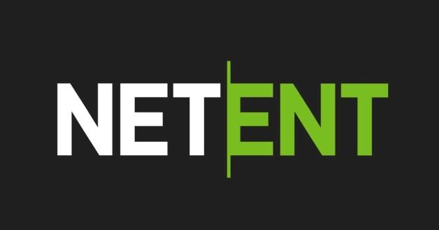 Net Ent Provider logo