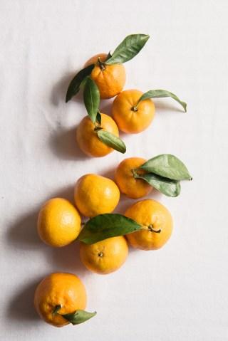 16_citrus_oliveoil_cake30_DZ