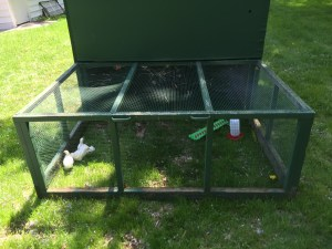 Front of the chicken tractor.