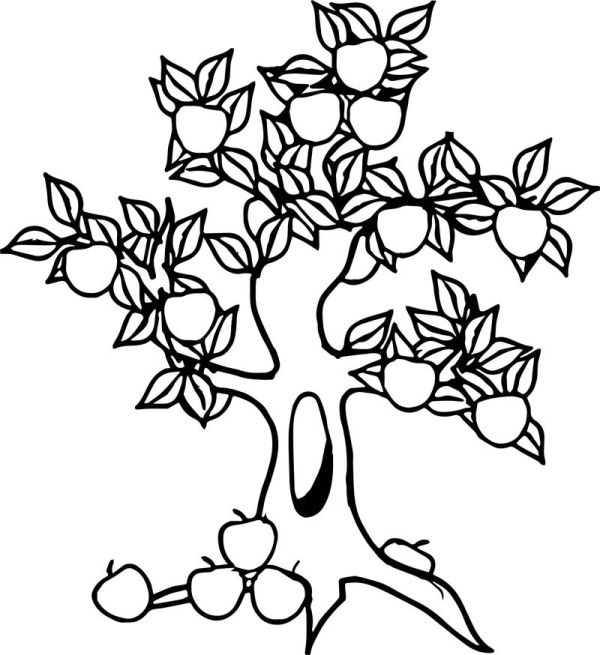 apple tree coloring pages # 61