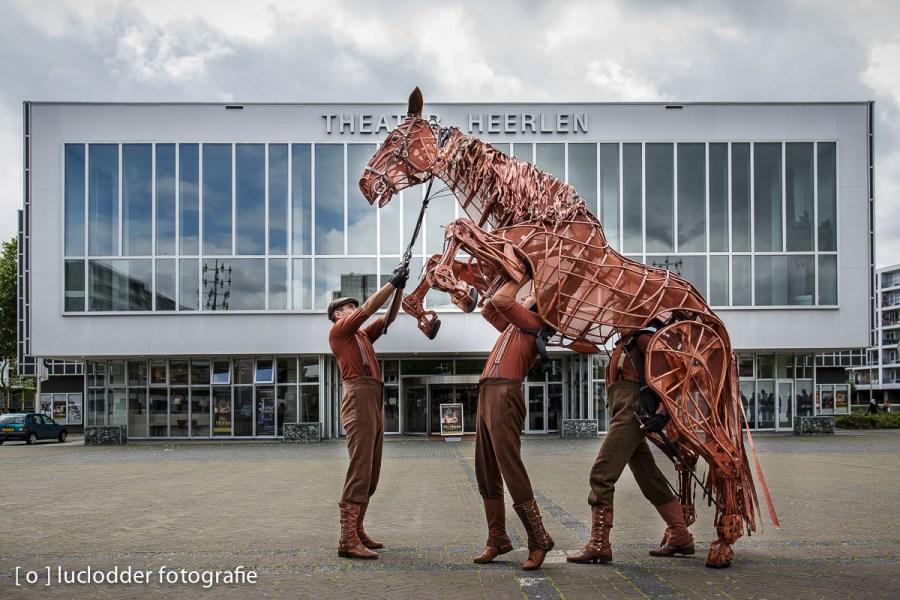 Een paard kwam zich voorstellen in Heerlen.