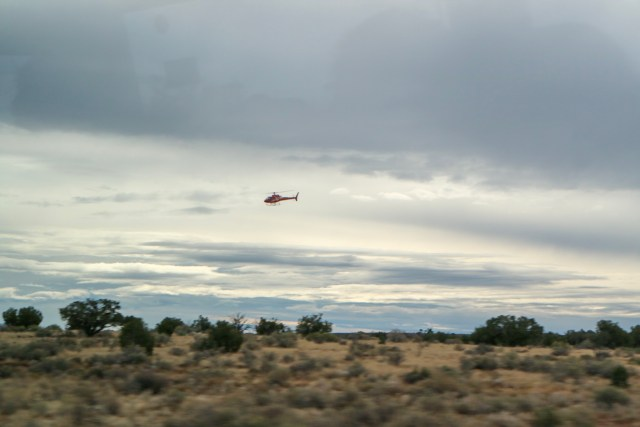 View of a helicopter flying low across the ground of the Joshua tree forest