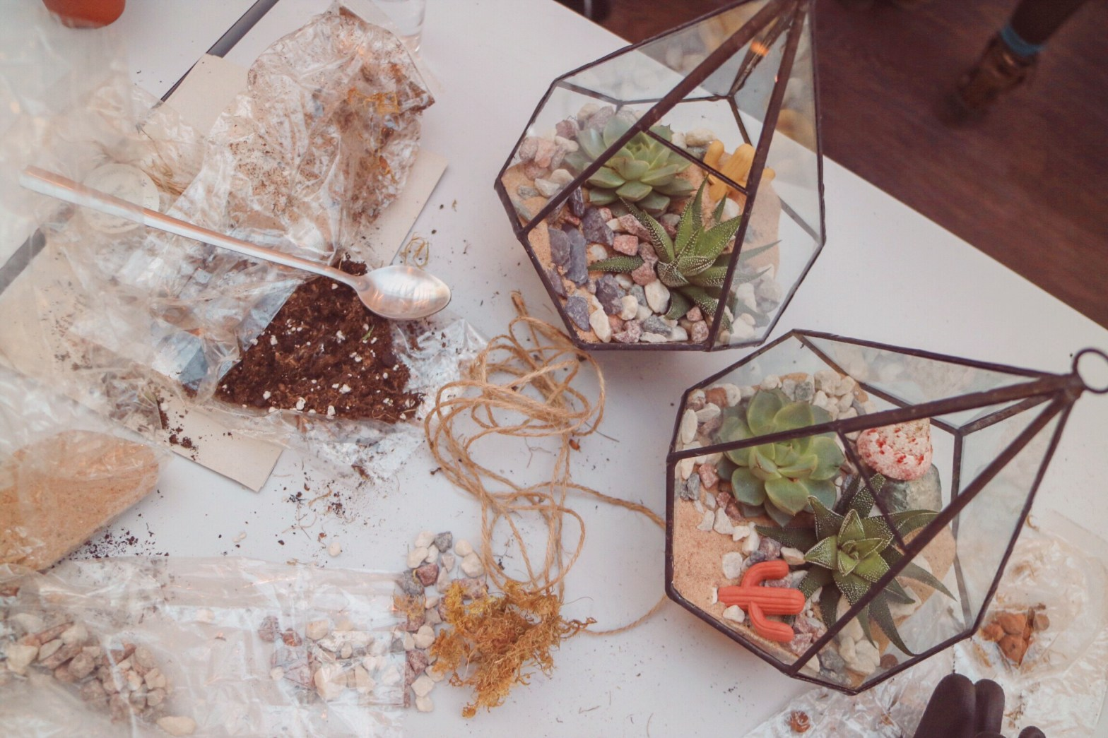 How to make a Terrarium - image of two terrariums made up with remnants of soil and pebbles around the table