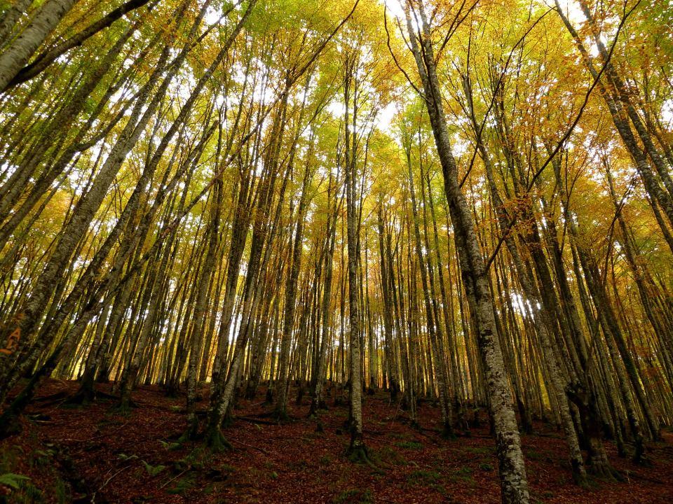 mejores rutas de senderismo en Navarra