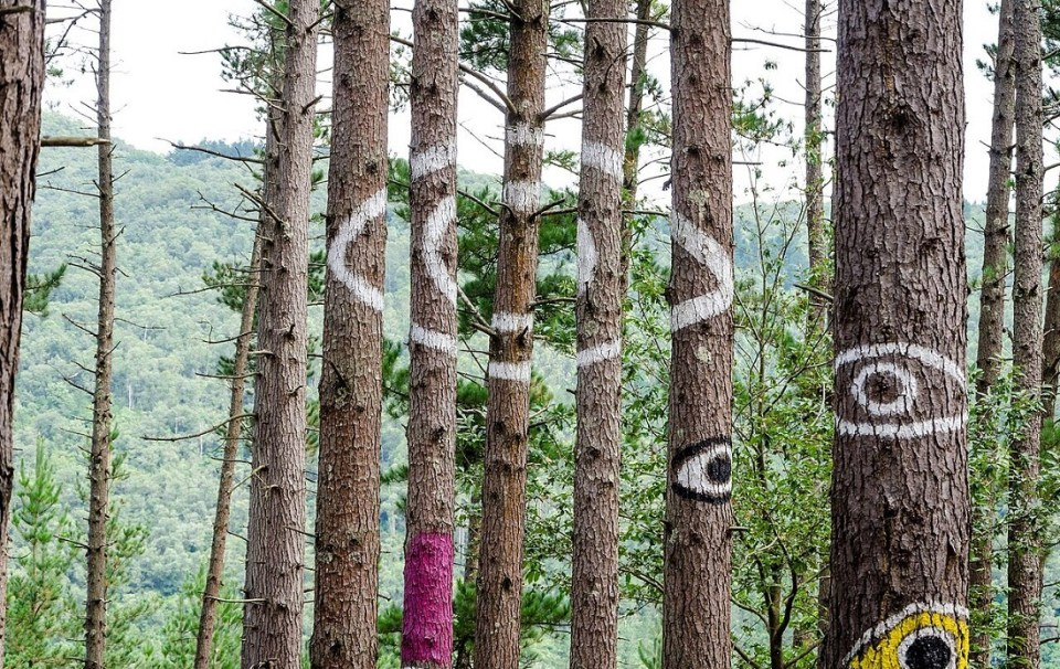 bosque pintado de Oma