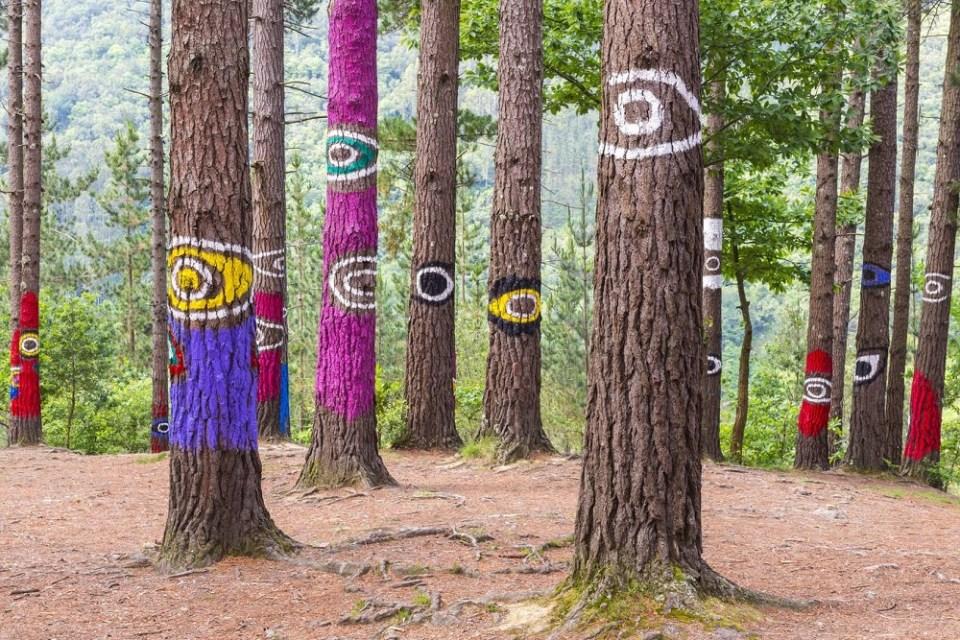 visita al bosque pintado de Oma