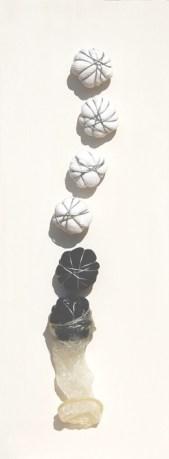 Rinascita 2,arch.n. 1090