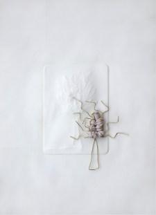 Arch. n. 1.534 Albero Eden3 carta incisa + ottone e tessuto compattato e resinato, cm 42x30. Anno 2018