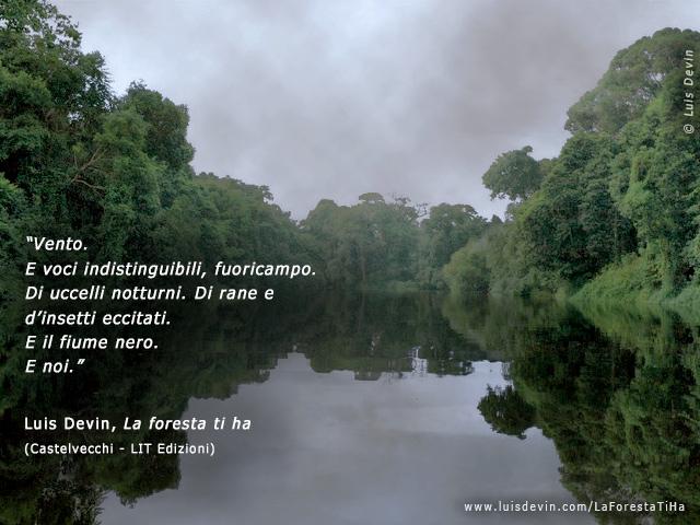 Pigmei Baka  Fotogallery del romanzo La foresta ti ha con paesaggio sonoro Piroga pigmea in