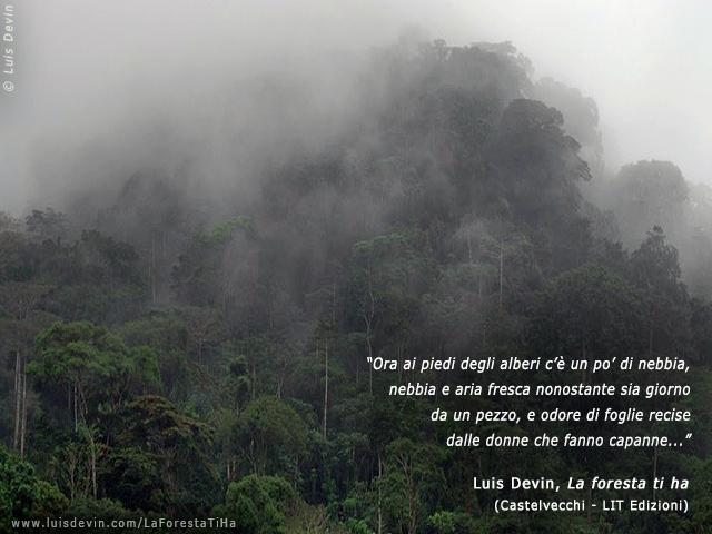 Pigmei Baka  Fotogallery del romanzo La foresta ti ha