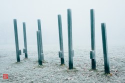 Mist - Photograph by Luis Paulo de Sá