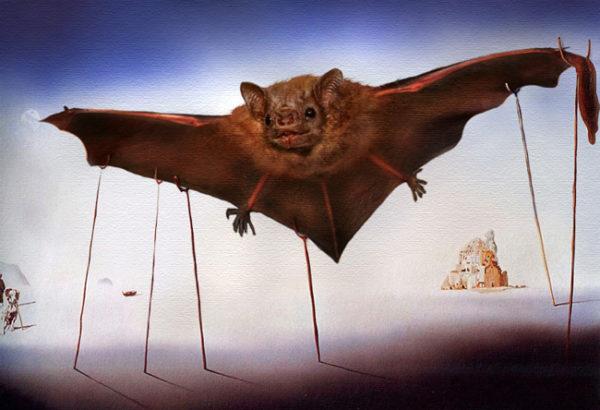 O Morcego, tela de Salvador Dali