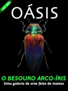Revista Oásis 342