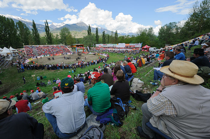Spectators watch cow fightings for the title of the Queen of Cows Combat at the National Hérens Cow Festival on May 5, 2012 in Aproz in the Alpine Canton of Valais, Switzerland.