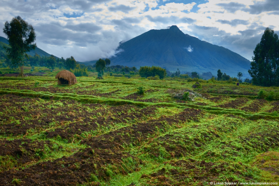 A small straw hut on a field in northwestern Rwanda with Mount Sabinyo on the horizon, an extinct volcano of the Virunga group at the border of Rwanda, the Democratic Republic of the Congo, and Uganda.