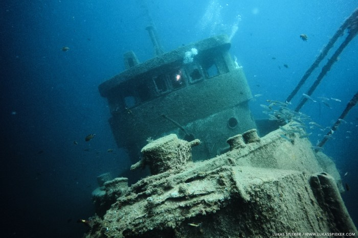 The wreck of the tugboat El Peñon sits on the ground in 32 metres depth in Tabaiba, Tenerife.