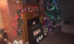 A dark green tree, with some blue lights circled around it, next to a dark brown fireplace and a light brown mantle piece, with some red lights circled around the mantle piece.
