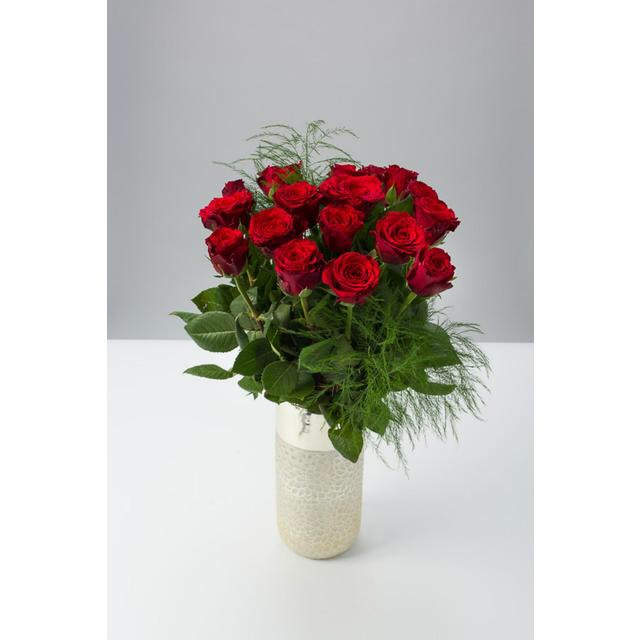 A bunch of red Roses with some green stems, in a white vase, on a white background.