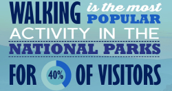 A large rectangular light blue box that has walking is the most popular activity in the National Parks with 40% visitors written in black and white writing on it.
